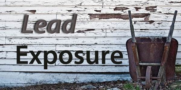 Lead_Exposure